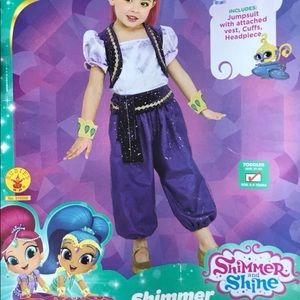Toddler Girl Shimmer Costume 3-4y